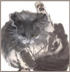 Ink painting of gray-and-white longhair cat. This image will soon be available as a notecard